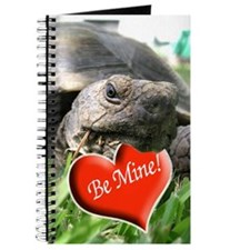 Helaine's Desert Tortoise Val Journal