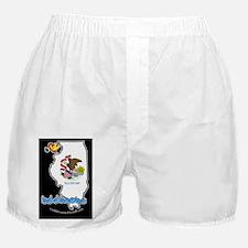 ILStateFlagILYbbt Boxer Shorts