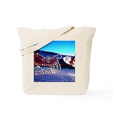 Alan's sleigh  and bear Tote Bag