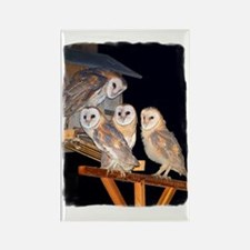 3-4owls_adj Rectangle Magnet