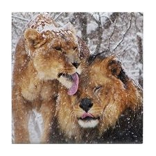 winter lions Tile Coaster