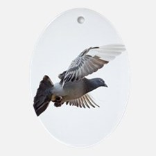 pigeon fly to love joy peace Ornament (Oval)