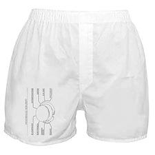 line trace bigside Boxer Shorts