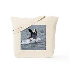 3-IMG_2407 Tote Bag