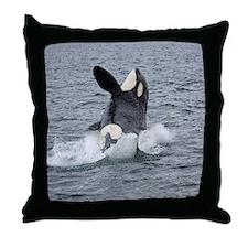 3-IMG_2407 Throw Pillow