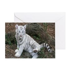 tiger2 Greeting Card