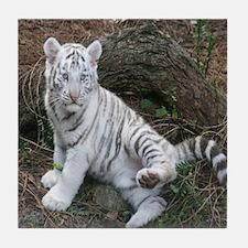 tiger2 Tile Coaster