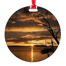 IMG_1500 Ornament