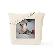 IMG_6423 Tote Bag
