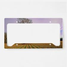 DSC_0051 License Plate Holder