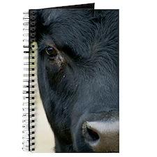 cowpostcards Journal