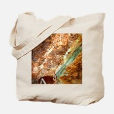 DSCI0221 Tote Bag