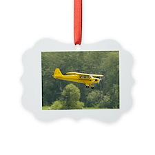 2-plane201011 Ornament
