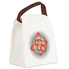 orbitals3 Canvas Lunch Bag