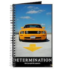 2-Determination200DPI23x35 Journal