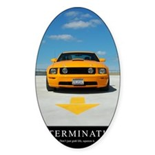 2-Determination200DPI23x35 Decal