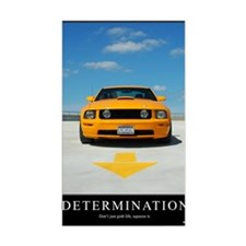 2-Determination200DPI23x35 Decal