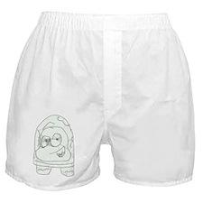turtle2 Boxer Shorts
