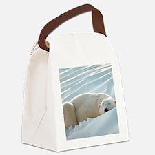 polarsbears5 Canvas Lunch Bag