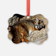 fox0001fin Ornament