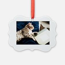 Cat Book Ornament