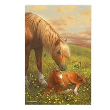 Hush Little Horsie_card Postcards (Package of 8)