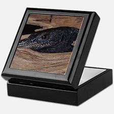 2-blacktree Keepsake Box