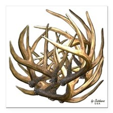 "Whitetail Buck Deer Antl Square Car Magnet 3"" x 3"""