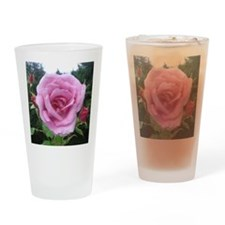 Pink Rose and Buds Square Drinking Glass