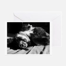 Berner Sleeping Greeting Card