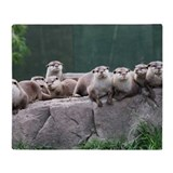 Otter Fleece Blankets