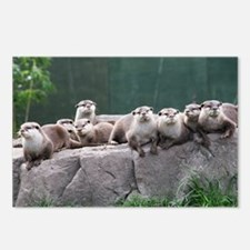Otter family Postcards (Package of 8)