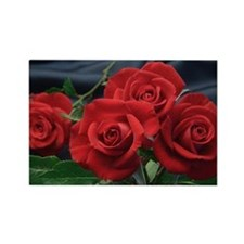 Red roses Rectangle Magnet