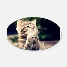 Praying Kitty Oval Car Magnet