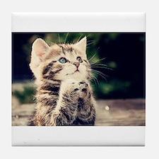 Praying Kitty Tile Coaster
