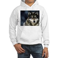 Wolf with Red Eyes Hoodie
