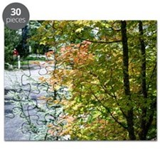 Fall leaves Puzzle