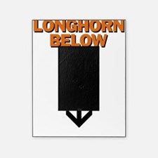 longhorn below Picture Frame