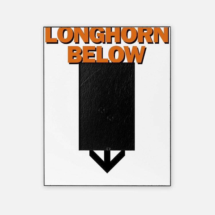 longhorn below Picture Frame