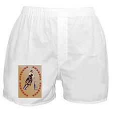 Barrel Horse-oval ornament Boxer Shorts