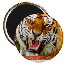 bengals_pocket Magnet