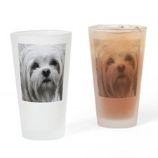 BLACK AND WHITE MALTESE PORTRAIT Drinking Glass