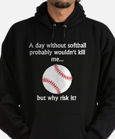 A Day Without Softball Hoody