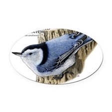 White-Breasted Nuthatch Oval Car Magnet