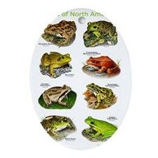 Frogs of North America Oval Ornament