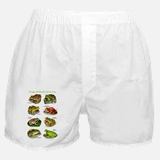 Frogs of North America Boxer Shorts