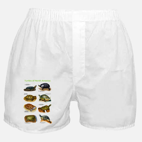 Turtles of North America Boxer Shorts