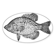 2-crappie Decal
