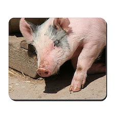 Walking Pig Mousepad