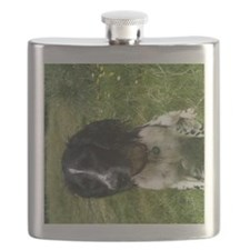 Lewis and park 001 Flask